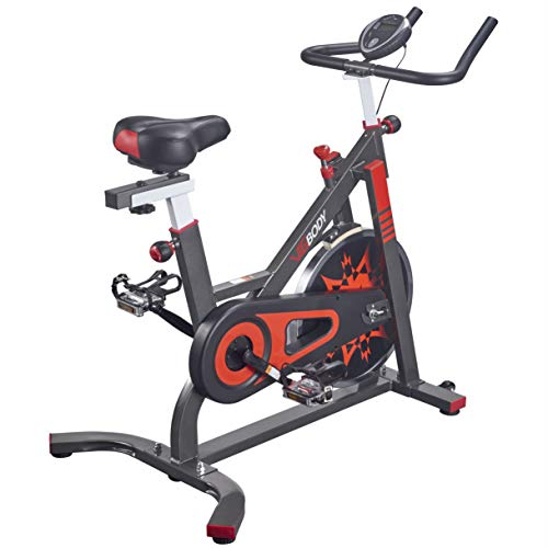 VIGBODY Exercise Bike Indoor Cycling Bicycle Stationary Bikes Cardio Workout Machine Upright...