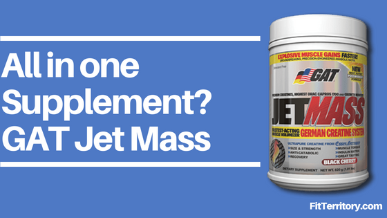 Jet Mass Review