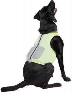 weighted jacket for dogs