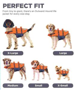 weighted dog vest